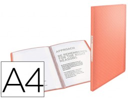 Carpeta 40 fundas Esselte Colour Ice A4 PP albaricoque